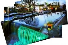 Regent's Canal II 2010