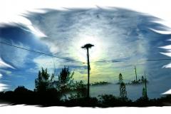 Osprey Nest, Florida Keyes