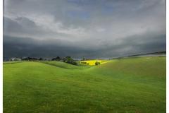 Yellow Field, Oxfordshire, UK